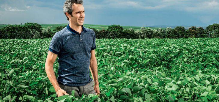 Brasil é o quarto maior mercado para produtos saudáveis