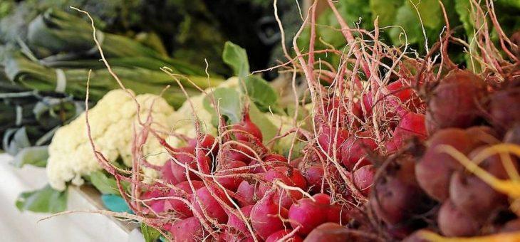 Produtos orgânicos ganham a mesa do brasileiro