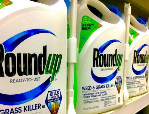 Monsanto é condenada a pagar U$ 2 bi a casal com câncer