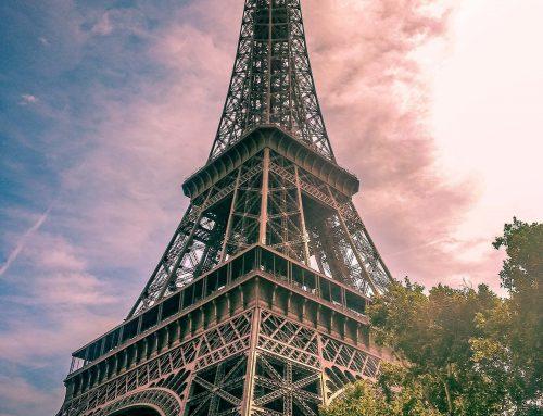 Número recorde de produtores adotam sistema orgânico de produção na França