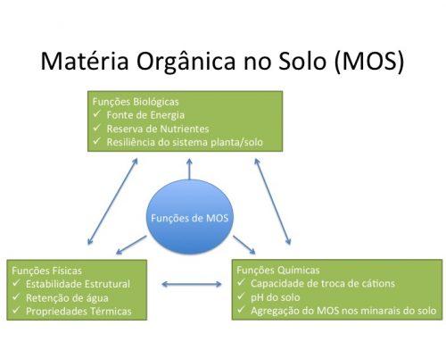 A Importância da Matéria Orgânica no Solo