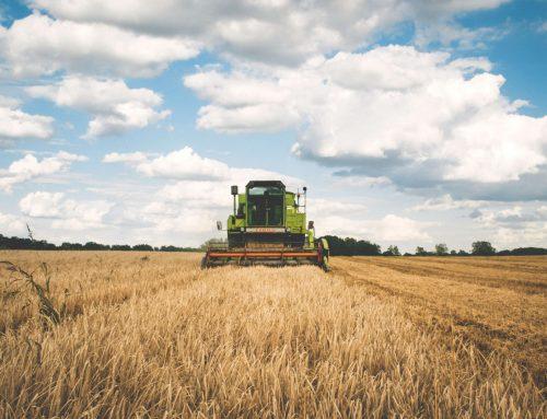 Créditos de Carbono e a Iniciativa da Cargill